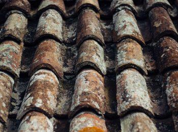 renovation toiture charpente