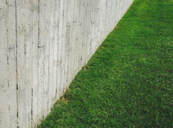 barrière anti rhizomes