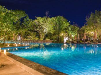 dallage piscine naturelle