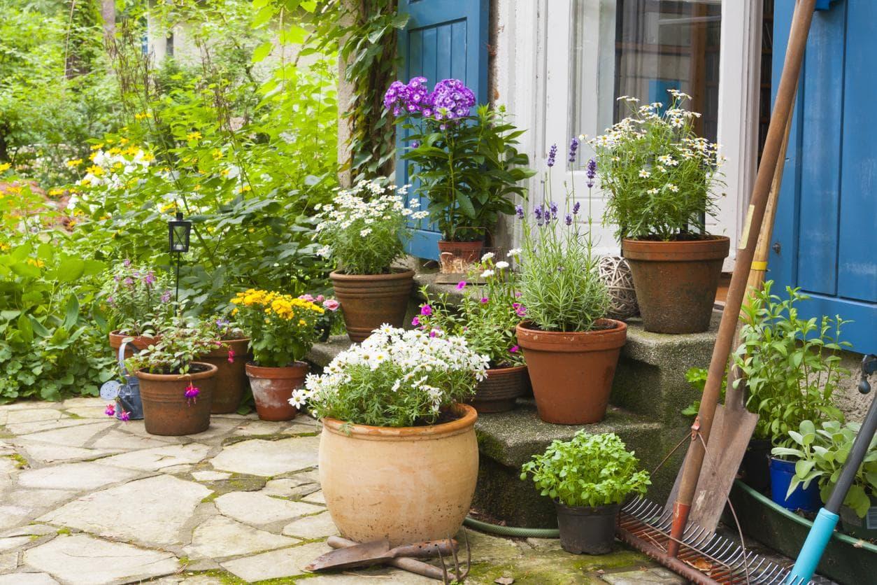 10 idees pas cheres a adopter pour embellir votre jardin