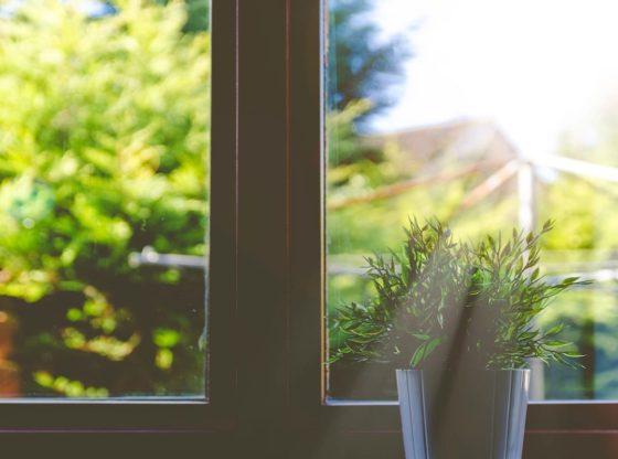 Portes Fenêtres Vitres Et Volets Huisclos