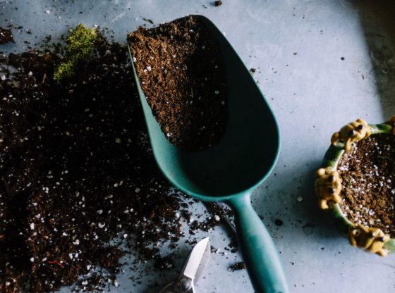 outillage jardinage securite